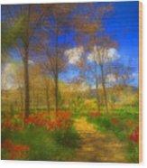 Spring Pathways Wood Print