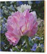Spring Petals Wood Print