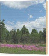 Spring Phlox Wood Print