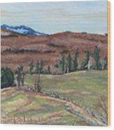 Spring Piopolis Rd Val Racine Quebec Canada Wood Print