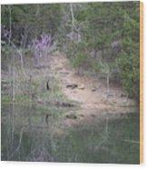 Spring Pond Wood Print