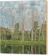 Spring Pond Reflection Wood Print
