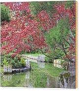 Spring Pond Reflection Wood Print