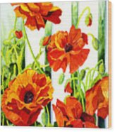 Spring Poppies Wood Print by Janis Grau