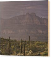 Spring Rain In The Sonoran  Wood Print