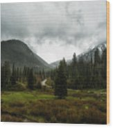 Spring Rain In The Wasatch Wood Print