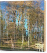 Spring Reflection Wood Print