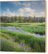 Spring River Valley Wood Print