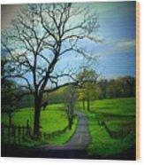 Spring Road Wood Print