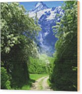 Spring Road To Mountains Wood Print