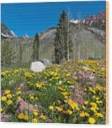 Spring Rocky Mountain Landscape Wood Print