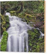 Spring Season Cascade Wood Print