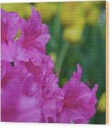 Spring Series #06 Wood Print