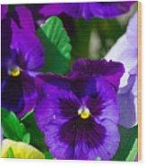Spring Series #15 Wood Print