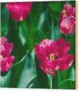 Spring Series #28 Wood Print