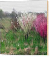 Spring Smell Wood Print