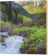 Spring Snow Melt Wasatch Mountains Utah Wood Print by Utah Images