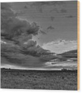 Spring Storm Front In Black And White Wood Print