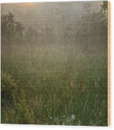 Spring Sunrise In The Valley Wood Print by Dale Kincaid