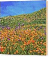 Spring Superbloom In Walker Canyon Wood Print