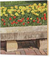 Spring Surrounds The Bench Wood Print