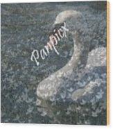 Spring Swan Wood Print