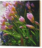 Spring Tenderness Wood Print