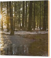 Spring Thaw Wood Print