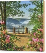 Spring Time At Colton Point State Park Wood Print