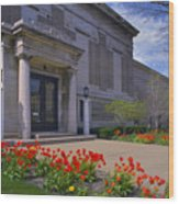 Spring Time At The Muskegon Museum Of Art Wood Print