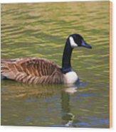 Spring Time Goose Wood Print