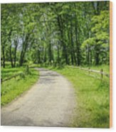 Spring Time In Rural Ohio Wood Print