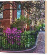Spring Time In The City Wood Print