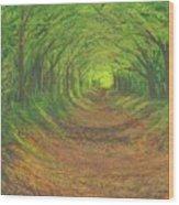 Spring Tree Tunnel Wood Print