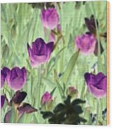 Spring Tulips - Photopower 3051 Wood Print
