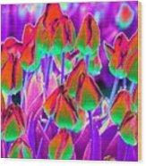 Spring Tulips - Photopower 3116 Wood Print
