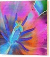 Spring Tulips - Photopower 3127 Wood Print