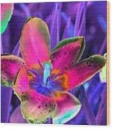 Spring Tulips - Photopower 3154 Wood Print