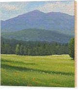 Spring Vista Wood Print