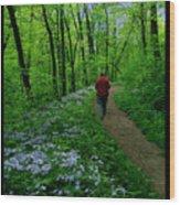 Spring Walker Wood Print