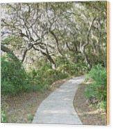 Spring Walkway Wood Print