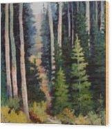 Spring Wood Path Wood Print