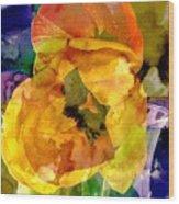 Spring Xx Wood Print