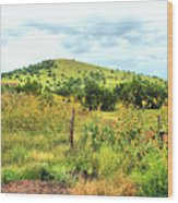 Springerville Sunflowers 0060 Wood Print