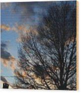 Springfield Evening 2013-02-14 Wood Print