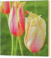 Spring's Garden Wood Print