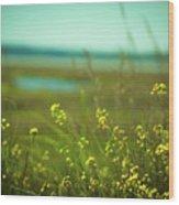 Springtime At The Beach Wood Print