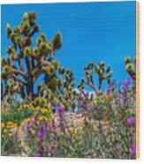 Springtime At The Canyon Wood Print