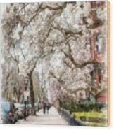 Springtime Boston Back Bay Wood Print
