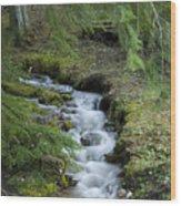 Springtime Creek Wood Print